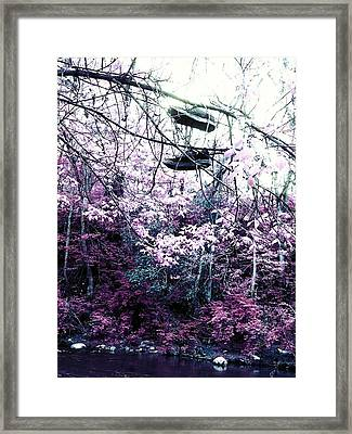 Pink Framed Print by Kiara Reynolds