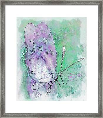 Pink Lady Framed Print by Jill Balsam