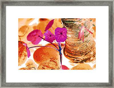 Pink Leaves In The Garden Framed Print by Lisa Holland-Gillem