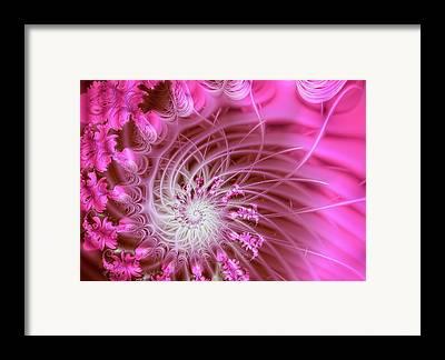 Swirly Framed Prints