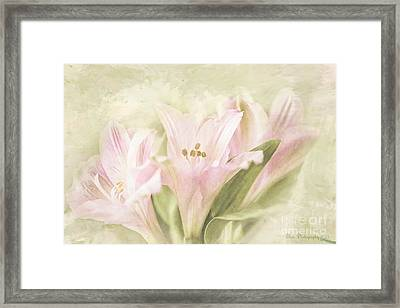 Framed Print featuring the painting Pink Lilies by Linda Blair