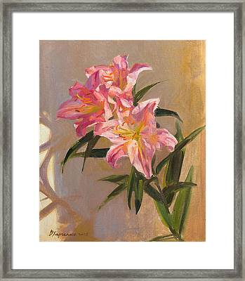 Pink Lily Framed Print by Victoria Kharchenko