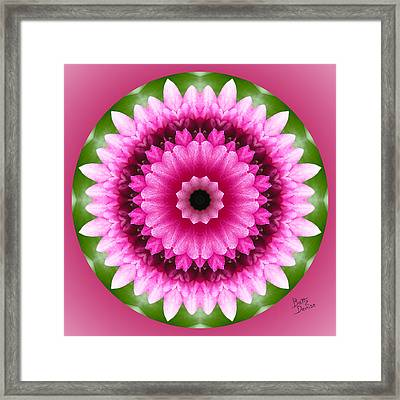 Framed Print featuring the photograph Pink Lotus Kaleidoscope by Betty Denise