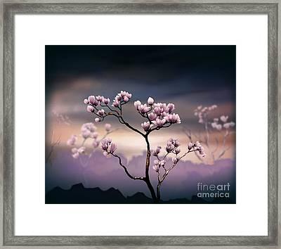 Pink Magnolia - Dark Version Framed Print by Bedros Awak
