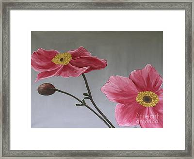 Pink Mexican Aster  - Sold Framed Print by Christiane Schulze Art And Photography