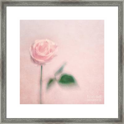 pink moments II Framed Print by Priska Wettstein