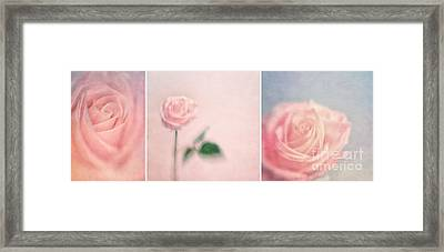 Pink Moments Framed Print by Priska Wettstein