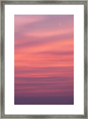 Pink Moon Framed Print by Bill Wakeley