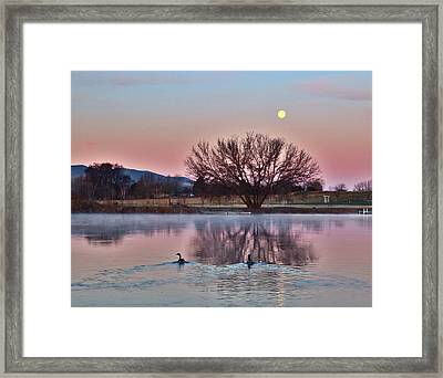 Framed Print featuring the photograph Pink Morning by Lynn Hopwood