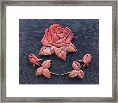 Pink My Lady Rose Framed Print by Bill Fugerer