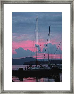 Pink Night Framed Print