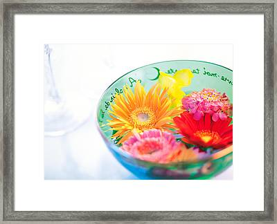 Pink, Orange And Yellow Flowers Framed Print by Panoramic Images