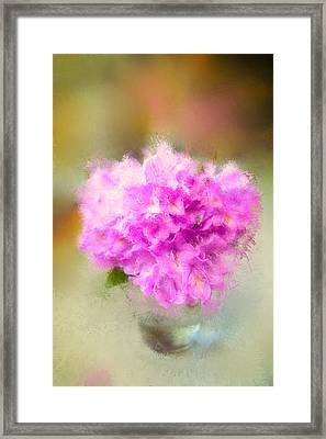 Pink Painted Rhododendrom Framed Print by Mary Timman
