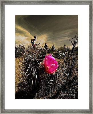 Pink Passion Framed Print by Scott Allison