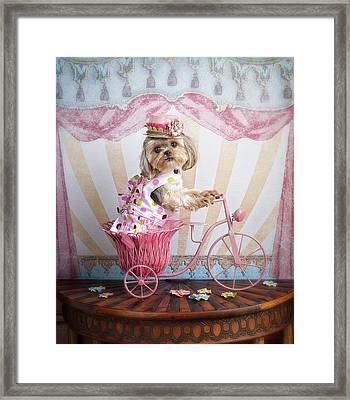 Pink Peddler Framed Print