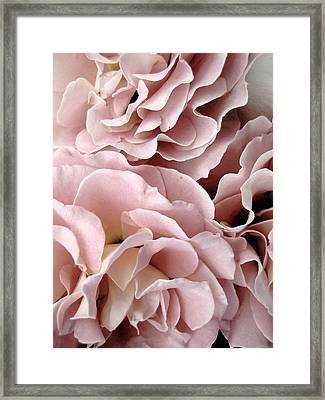 Pink Petal Profusion Framed Print by Ann Powell