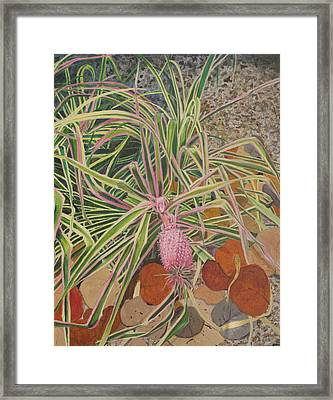 Pink Pineapple Framed Print