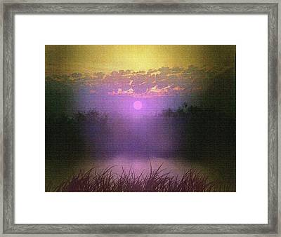 Pink Pond Morning Framed Print by Robert Foster