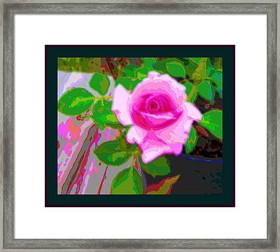 Pink Potted Rose 2 Borders Enhanced Framed Print by L Brown