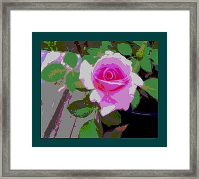 Pink Potted Rose Teal Border Framed Print by L Brown