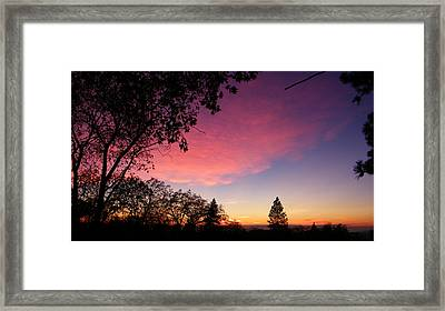Pink Powder Puff Framed Print