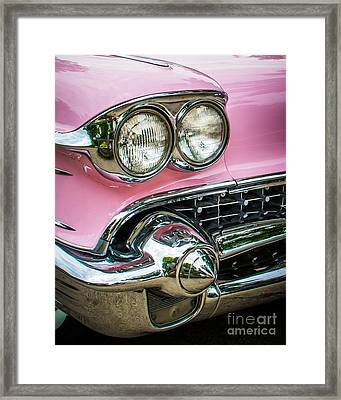 Pink Power Framed Print by Perry Webster
