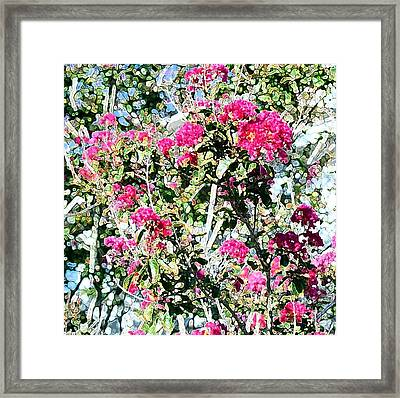 Framed Print featuring the photograph Pink Profusion by Ellen O'Reilly