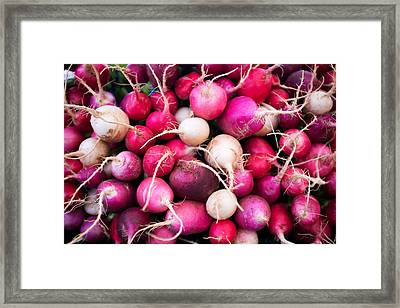 Pink Radishes Framed Print by Tanya Harrison