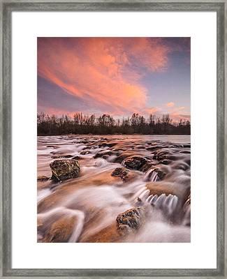Pink Rapids Framed Print by Davorin Mance
