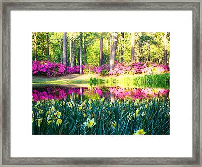 Pink Reflections By Jan Marvin Framed Print