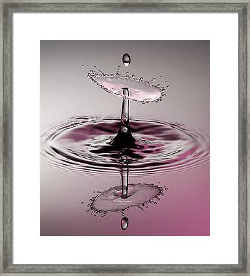Pink Reflections Framed Print