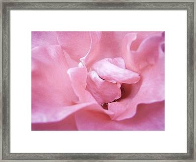Pink Romance Framed Print by Roxy Hurtubise
