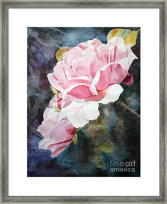 Pink Rose Caroline Framed Print