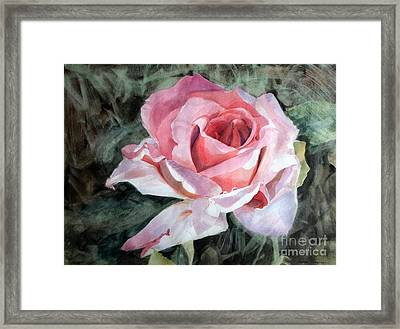 Pink Rose Greg Framed Print