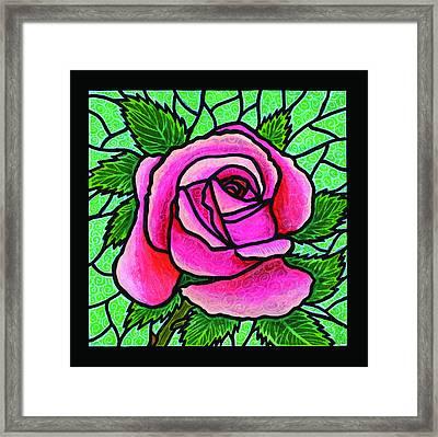 Pink Rose Number 5 Framed Print by Jim Harris