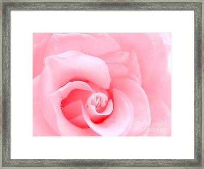 Love Me Tender Framed Print by Patti Whitten