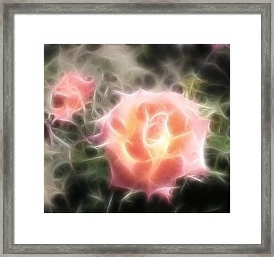 Pink Roses Digital Artwork Framed Print by Georgeta Blanaru
