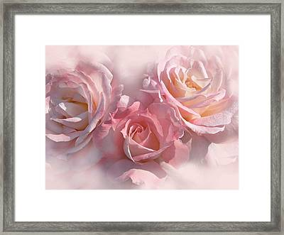 Pink Roses In The Mist Framed Print by Jennie Marie Schell