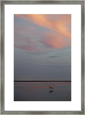 Framed Print featuring the photograph Pink Sky And Sand by Kjirsten Collier