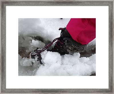 Pink Slushy Framed Print by Marwan George Khoury