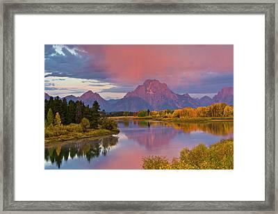 Pink Sunrise, Oxbow, Grand Teton Framed Print