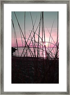 Pink Sunset Framed Print by Marianna Mills