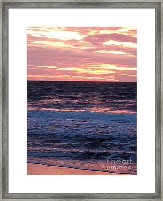 Pink Tangerine Framed Print