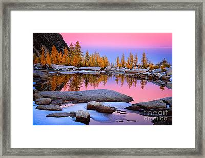 Pink Tarn - October Framed Print