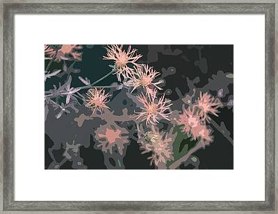 Pink Thistle Abstract Framed Print