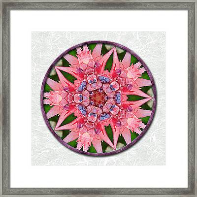 Pink Tropical Bromeliad Mandala On Green Tinted Rice Paper Framed Print by Elaine Plesser