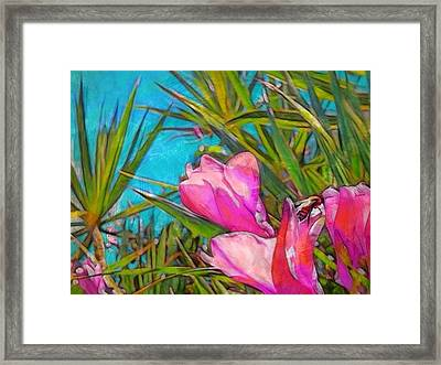 Pink Tropical Flower With Honeybee - Horizontal Framed Print