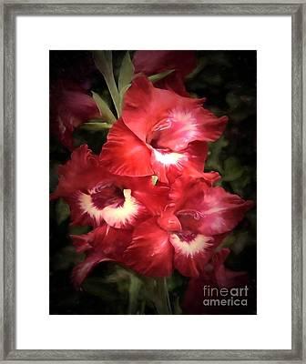 Pink Trumpet 2 Framed Print