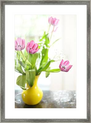 Pink Tulips In Yellow Vase Framed Print by Lois Bryan