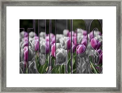 Pink Tulips Framed Print by Trish Tritz